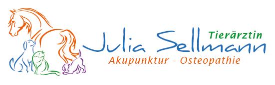 julia-sellman.de